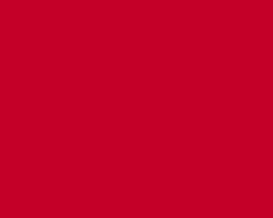 Turner Acryl Gouache 20ml Tube Japanese Red